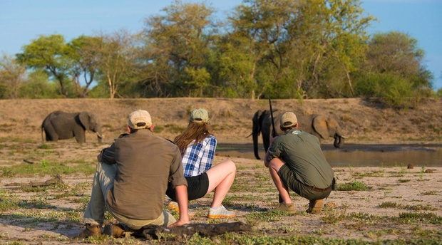Guided walking safaris in greater kruger south africa